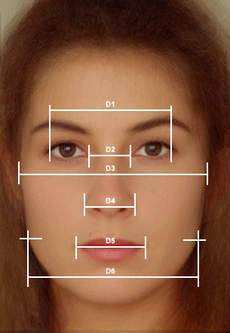 picture of a face divided up with lines and numbers