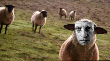 Sheep. The sheep closest to the camera has its face replaced with Foucault's