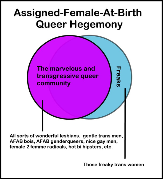 Chart of Assigned-Female-At-Birth Queer Hegemony. Large circle: The marvelous and transgressive queer community: all sorts of wonderful lesbians, gentle trans men, AFAB bois, AFAB genderqueers, nice gay men, female 2 femme radicals, hot bi hipsters, etc. Small outlier circle: Freaks: Those freaky trans women