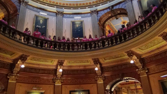 Protestors wearing pink shirts in the Michigan Capitol
