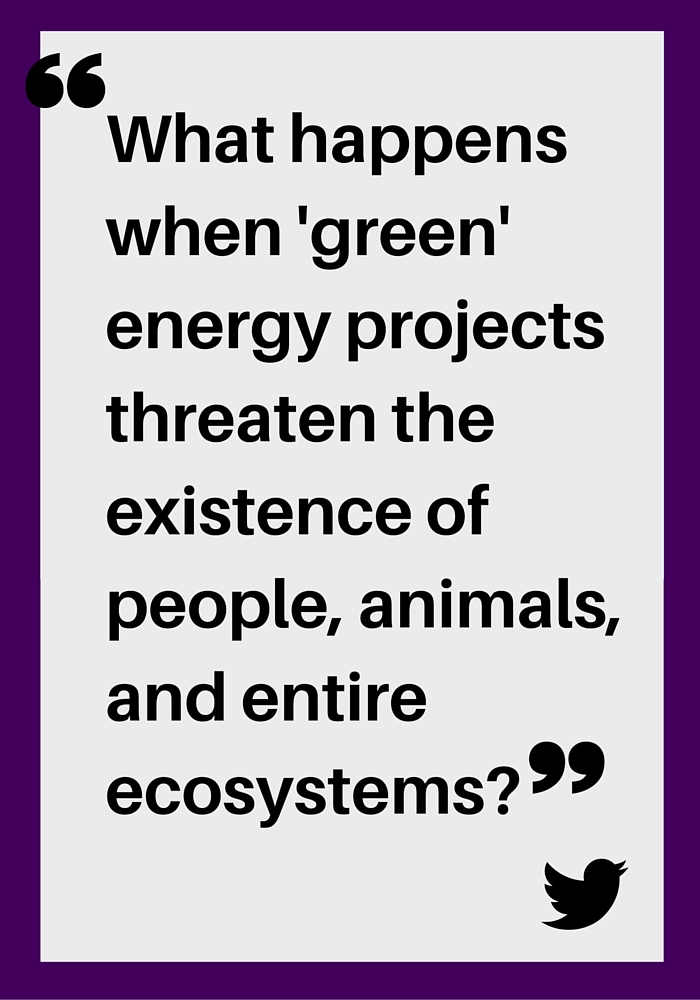"""What happens when 'green' energy projects threaten the existence of people, animals, and entire ecosystems?"""