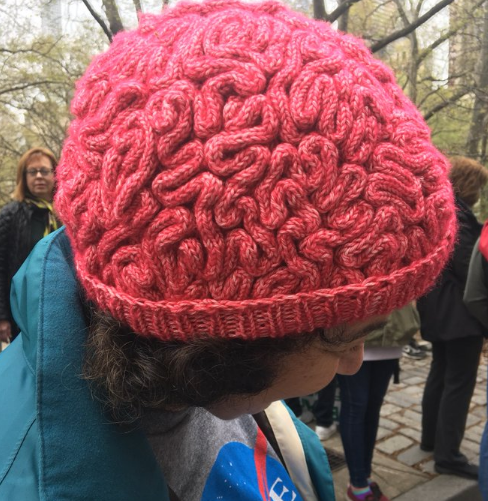 A pink brain hat on a woman marching for science.